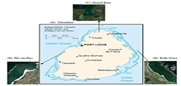 Coastal Marine Activities and Coral Cover at Three Tropical Coral Reefs Around an Aceanic Island, Mauritius-Clyto Access